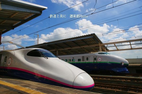 DSC07425.jpg