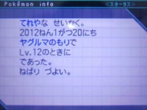 オタマロ(色違い性格画面)