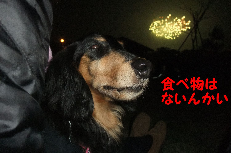 YUTA20111105-11.jpg