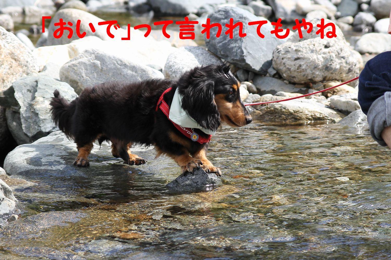 yuta20110919-13.jpg