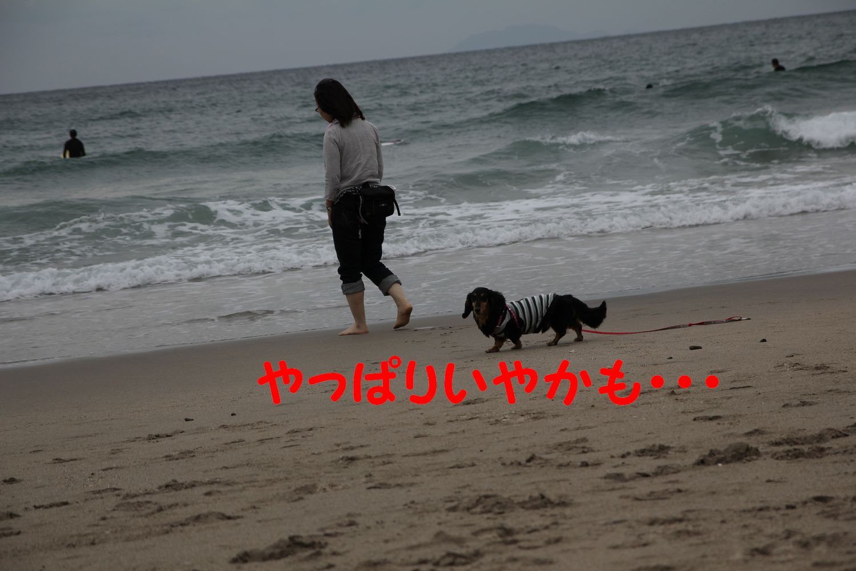 yuta20110925-8.jpg