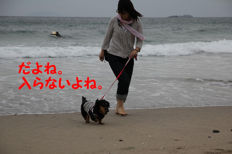 yuta20110925-9.jpg