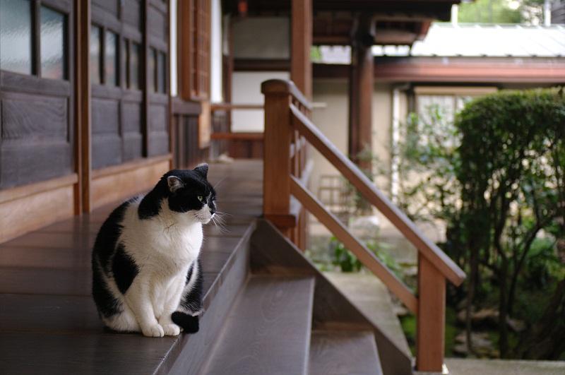20110924_blog02s.jpg