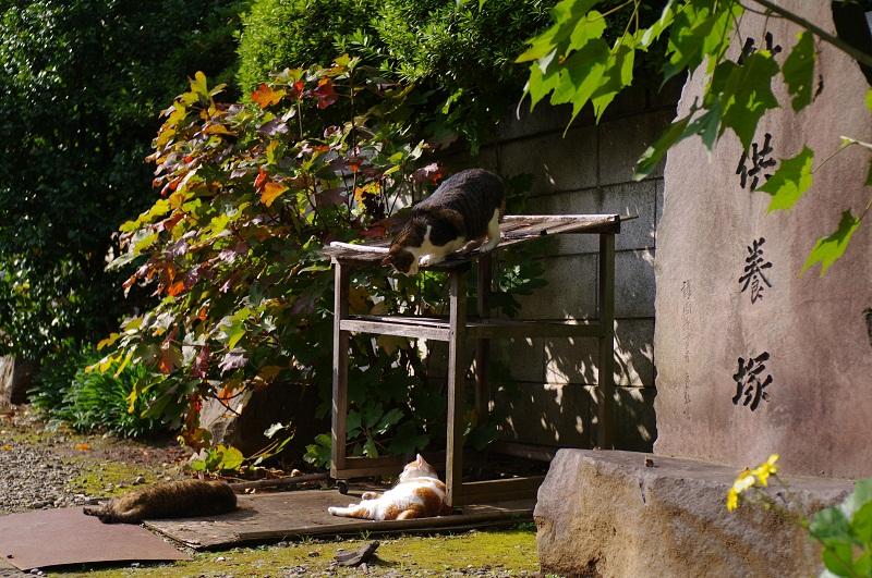 20111210_blog2s.jpg