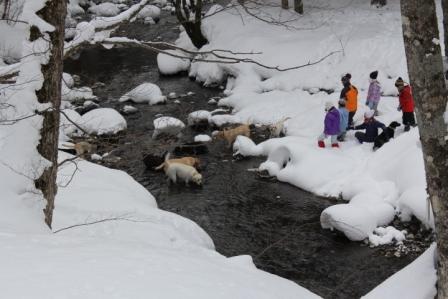 真冬の入水~