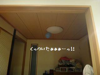 DSC00743_R.jpg