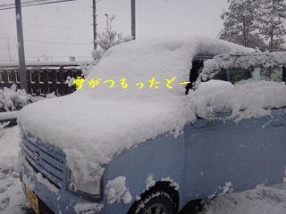 DSC00905_R.jpg
