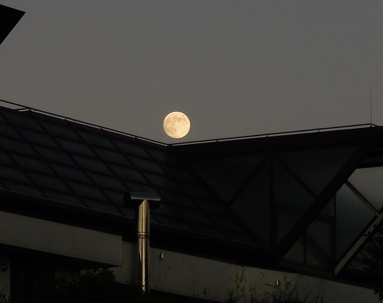 nikonp300_moon.jpg