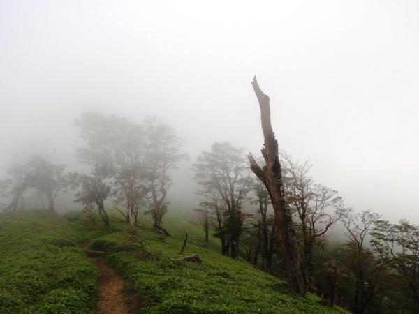 濃霧の稜線3