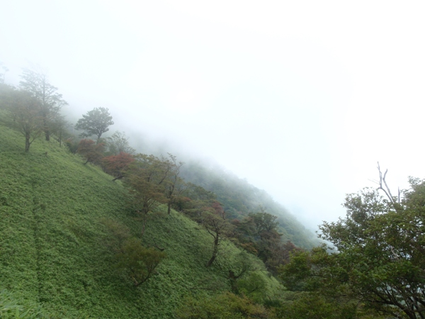 濃霧の稜線2
