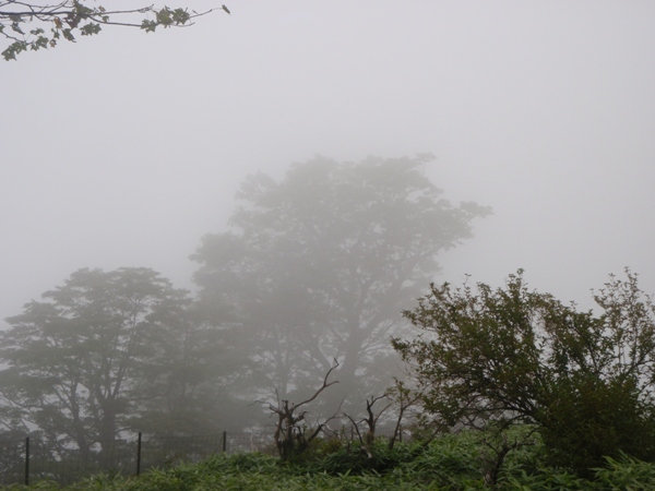 濃霧の稜線