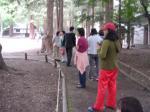 平成23年断食 神宮への散歩2