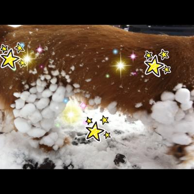 雪だまキラキラ