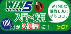 win5予想サイト