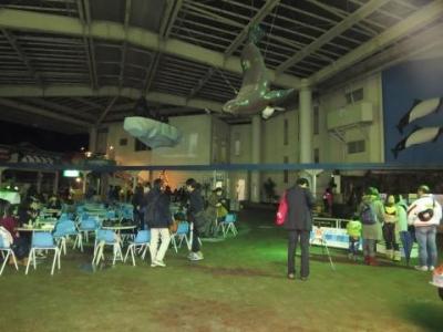 夜の水族館 (2)