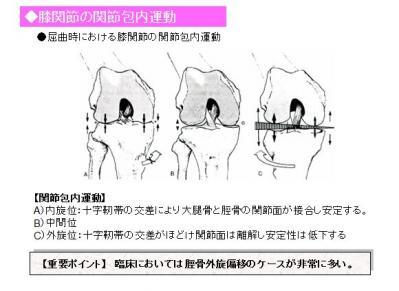 膝の関節包内運動
