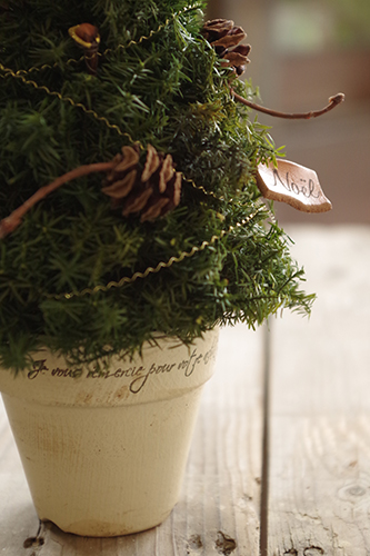木の実のプチクリスマスツリー