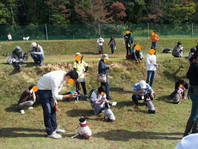 rakugaki_20121110_0001.jpg