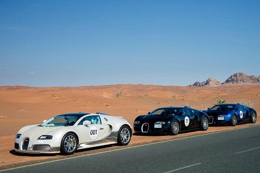 Bugatti-Veyron-Grand-Tour-2013-07.jpg