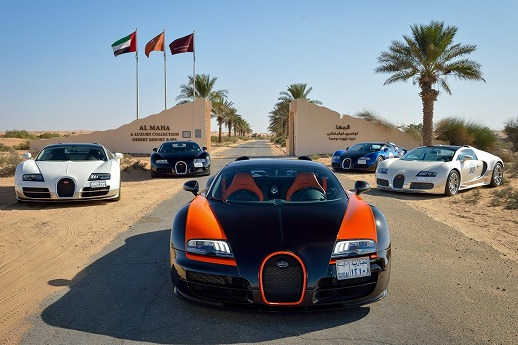 Bugatti-Veyron-Grand-Tour-2013-11.jpg