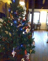 Christmas party iris