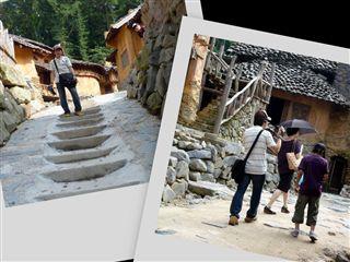 collage6_R.jpg