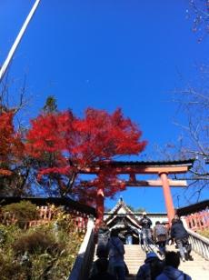 fc2blog_20121117050322e15.jpg