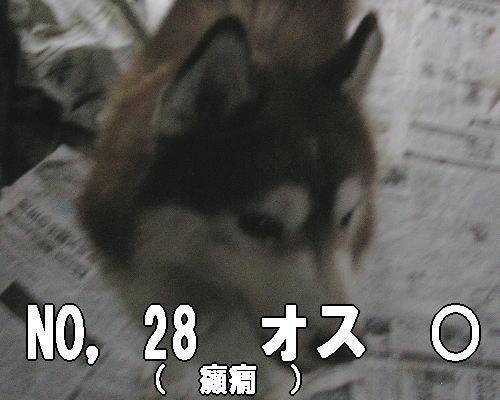 20120726210344cef.jpg