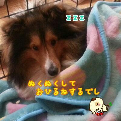 fc2_2014-02-10_13-40-03-494.jpg