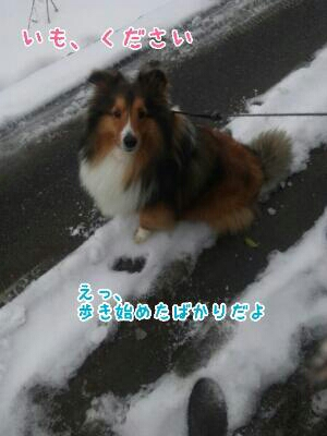 fc2_2014-02-13_22-31-28-784.jpg
