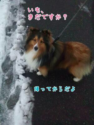 fc2_2014-02-13_22-32-16-322.jpg