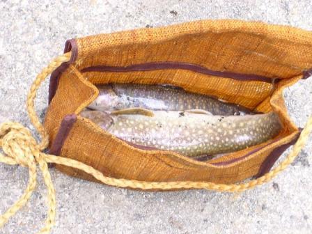 科織りの魚籠