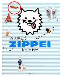 ZIPPI.jpg