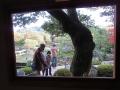 足立美術館の庭10
