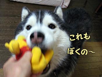 おもちゃも欲しい