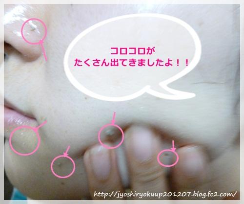 201209162247190b2.jpg