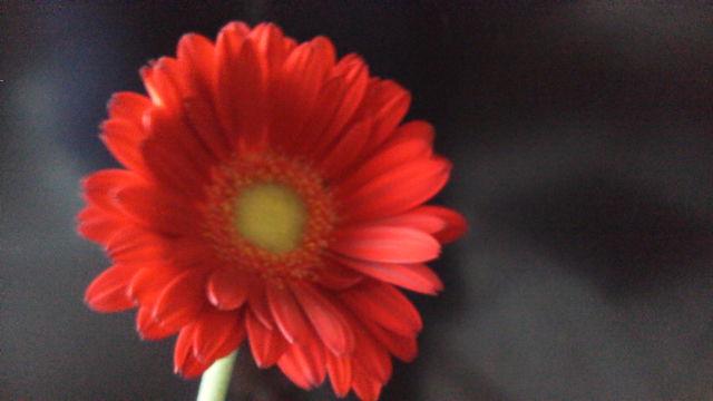 20121106095236.jpg