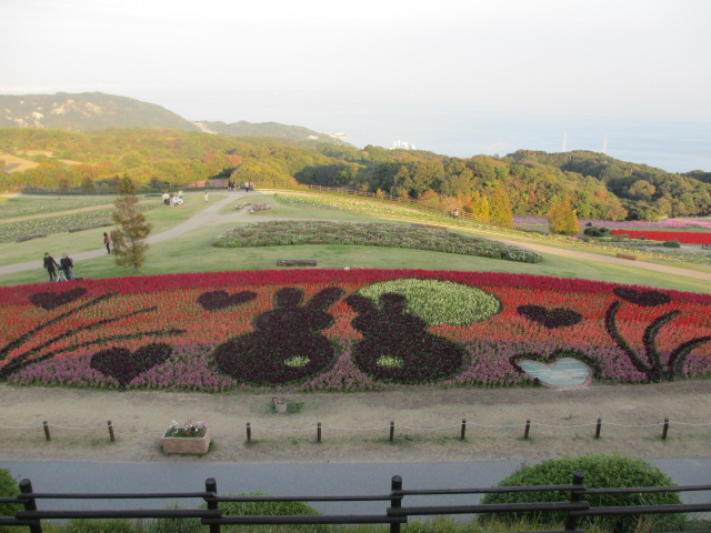 あわじ花さじき2013年11月-6