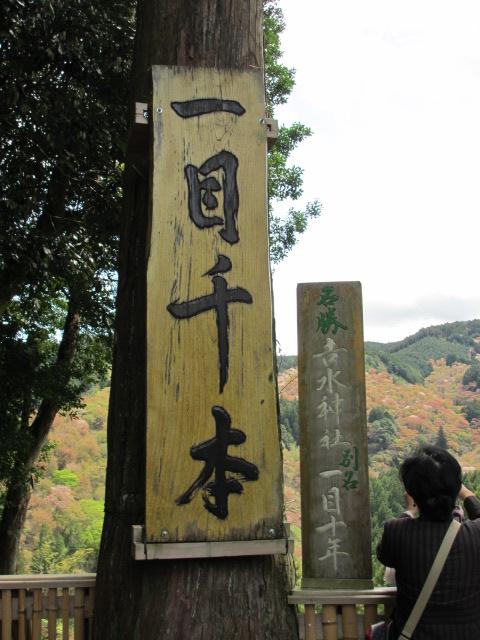吉水神社(一目千本)