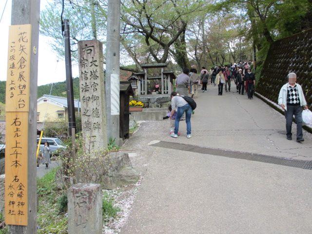 竹林院群芳園~花矢倉展望台2