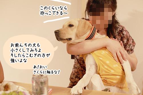 2012081607.jpg