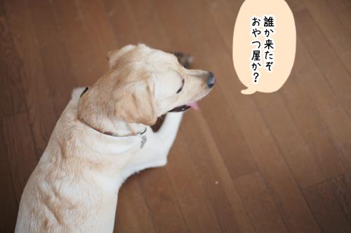 2012090702.jpg