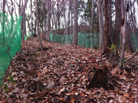 fc2blog_20121221131148a3f.jpg
