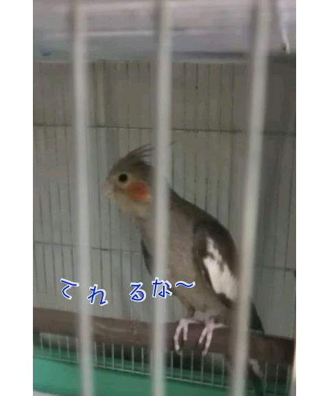 20121108-232430.jpg