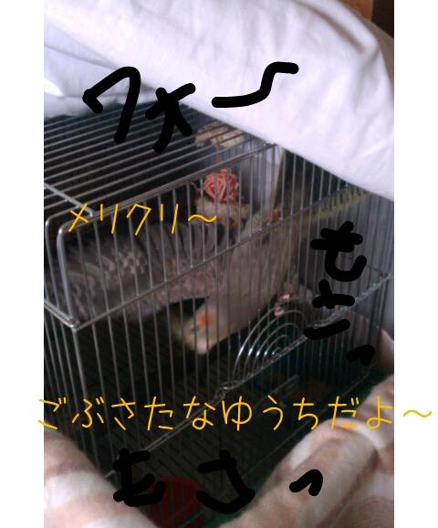 20121224-010327.jpg