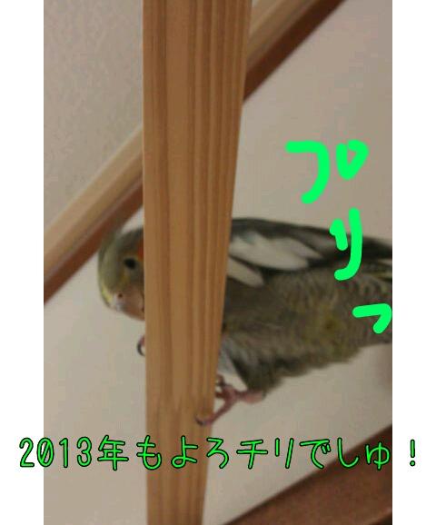 20130101-234407.jpg