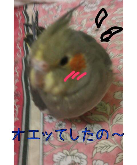 20130103-001710.jpg