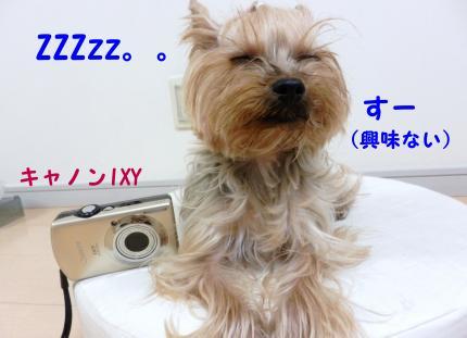 PC170024_convert_20111218172707.jpg