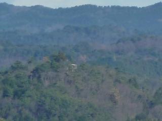 権現山の展望台(三王山より)