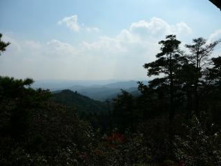 権現山から南方向の眺望
